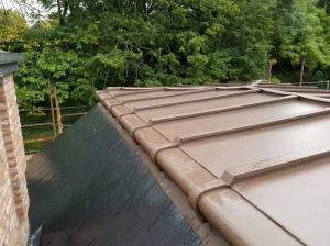 Project Clanbrasil (Pigmento Brown Zinc)